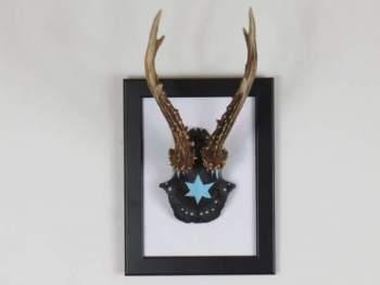 antler-art-handpainted-roe-deer-skull-with-antlers-on-a-frame-for ...